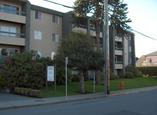 Niagara Court Apartments - Victoria, British Columbia - Apartment for Rent