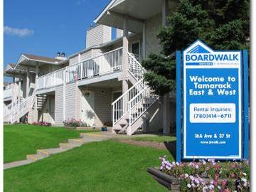 Apartments for Rent in Edmonton -  Tamarack East & West - CanadaRentalGuide.com
