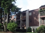 Imperial Parkside - Surrey, British Columbia - Apartment for Rent