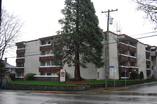 Rockland Heights - Victoria, British Columbia - Apartment for Rent